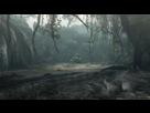 http://www.noelshack.com/2019-36-5-1567761839-sunkenforest-area10.jpg