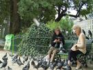https://www.noelshack.com/2019-37-4-1568299672-731360748-banc-de-jardin-public-moustache-pigeon-aux-cheveux-gris.jpg