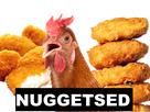 http://image.noelshack.com/fichiers/2019/40/7/1570379650-les-chofas-on-baise-vos-poules-kekeh.png