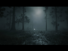 https://www.noelshack.com/2019-48-5-1575041411-red-dead-redemption-ii-screenshot-2019-11-24-13-14-34-58-min.jpg
