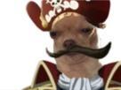 https://image.noelshack.com/fichiers/2019/51/5/1576836931-chien-roger.png