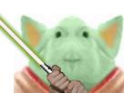 http://www.noelshack.com/2020-03-1-1578897289-cochon-yoda-1.jpg