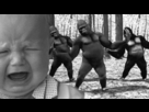 https://www.noelshack.com/2020-03-7-1579439692-1376661063-babymonkey.gif