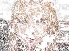 https://image.noelshack.com/minis/2020/04/3/1579651117-lisa-boit-un-petit-coup-en-t-ecoutant.png