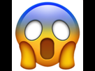 http://www.noelshack.com/2020-04-4-1579784753-face-screaming-in-fear.png