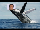 https://image.noelshack.com/minis/2020/14/5/1585938107-2-humpback-whale-breaching-christopher-swannscience-photo-library.png