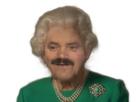 https://image.noelshack.com/fichiers/2020/15/1/1586174572-risitas-reine.png
