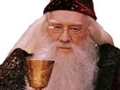 https://image.noelshack.com/fichiers/2020/16/2/1586875671-dumbledoreverre.png