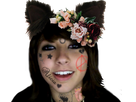 https://image.noelshack.com/fichiers/2020/18/6/1588453419-boxxy-tatoo-cat-ears-fleur-alicia.png