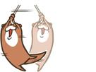 https://image.noelshack.com/fichiers/2020/20/4/1589464665-sticker-6.png