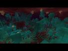 https://www.noelshack.com/2020-26-2-1592941188-warped-forest.jpg