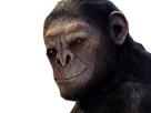 https://image.noelshack.com/fichiers/2020/30/6/1595708114-cesar-brutus.png