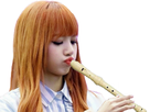 https://image.noelshack.com/minis/2020/31/7/1596402397-lisa-te-joue-un-petit-air-de-flute.png
