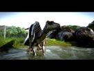 https://www.noelshack.com/2020-45-2-1604433495-jurassic-world-evolution-screenshot-2019-12-14-01-57-02-85.jpg