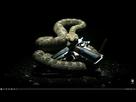 https://www.noelshack.com/2021-03-3-1611147016-capture.jpg