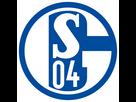 https://image.noelshack.com/fichiers/2021/03/5/1611311155-fc-schalke-04-esportslogo-square.png