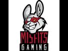 https://image.noelshack.com/fichiers/2021/03/5/1611311155-misfits-gaminglogo-square.png