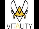 https://image.noelshack.com/fichiers/2021/03/5/1611311242-team-vitality-2018.png