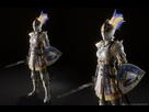 https://www.noelshack.com/2021-03-6-1611420628-craig-matchett-craig-matchett-seraparadearmor-shield.jpg