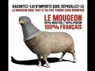 https://www.noelshack.com/2021-04-2-1611701792-1600683150-le-mougeon1.jpg