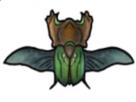 https://image.noelshack.com/fichiers/2021/13/5/1617358821-1-pe2jiph1.png