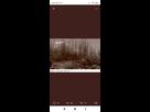 https://www.noelshack.com/2021-24-4-1623966268-screenshot-2021-06-17-09-23-25-995-com-android-chrome.jpg