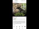 https://www.noelshack.com/2021-33-4-1629368797-screenshot-2021-08-19-12-26-19-559-com-instagram-android.jpg